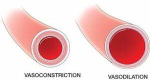 ipertensione vasodilatazione